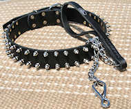 Spiked Design Leather Pitbull Collar