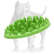 """Green Grass Glade"" Interactive Slow Dog Feeder for American Pitbull Terrier"