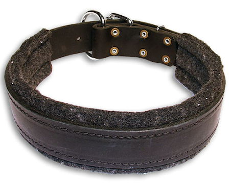 Leather Custom Dog Collar for everyday Pitbull