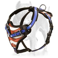 Prime functional leather dog harness