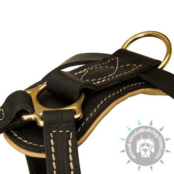 Durable Padded Back Plate on Studded Leather Dog Harness for Pitbull Daily Walking