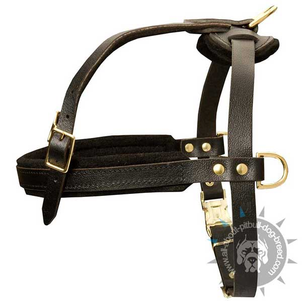 Comfortable easy handling leather harness