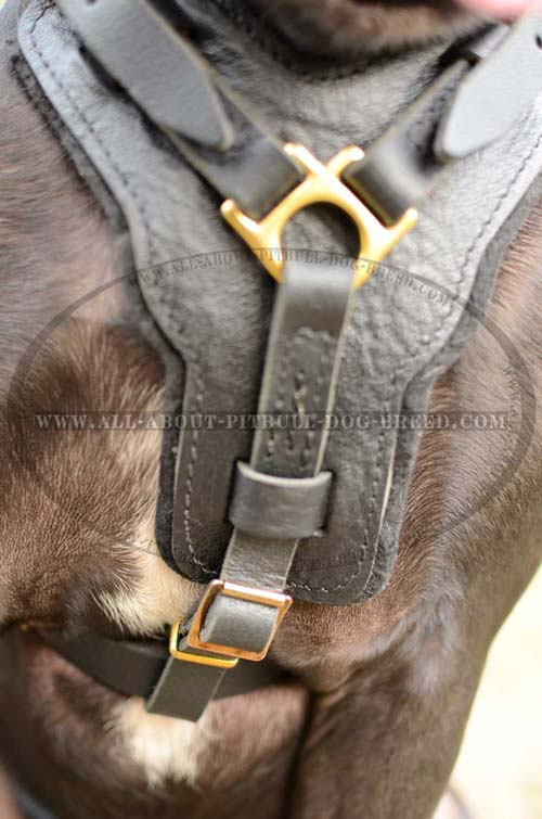 Universal Leather Dog Harness