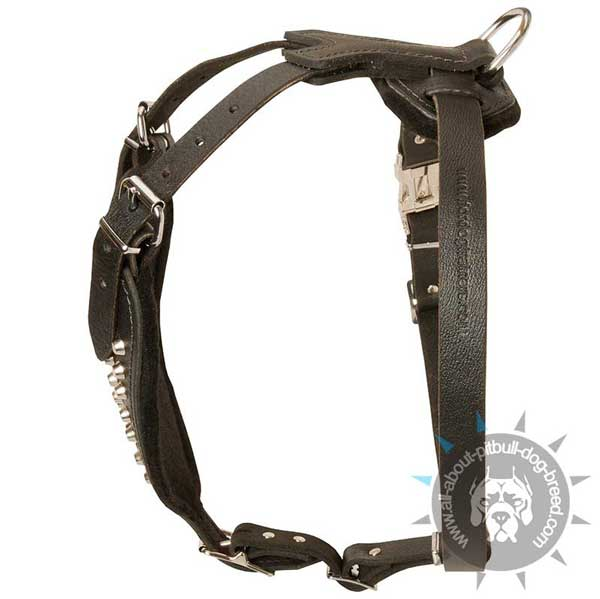 Sophisticated leather dog harness