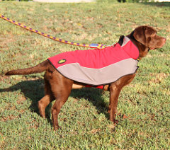Easy adjustable winter dog coat with padding