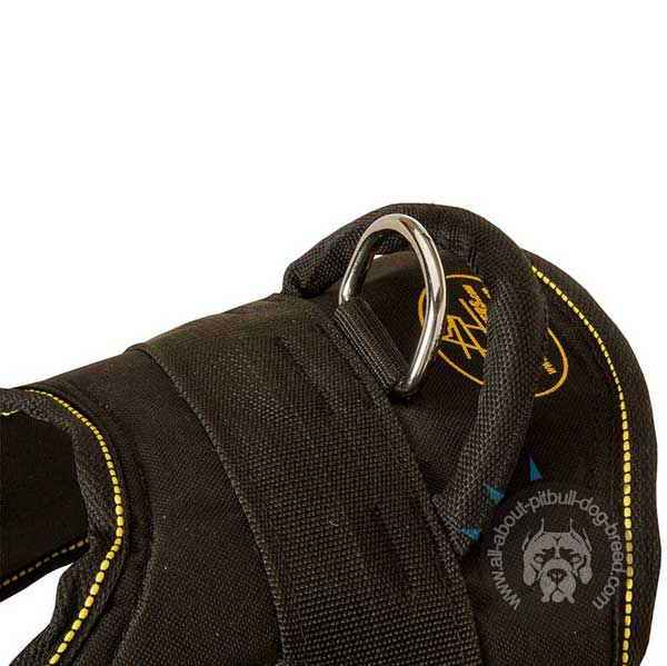 Professional nylon dog harness for tracker dogs