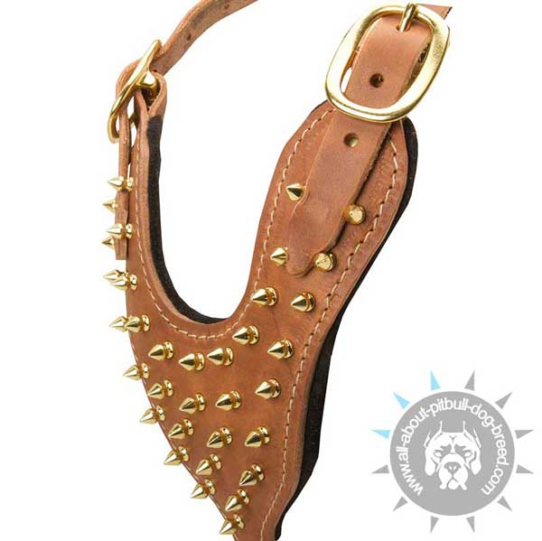 Field leather dog harness with awesome decoration