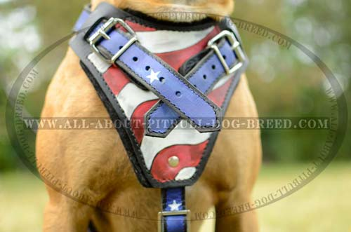 Newest Pitbull Breed Leather Harness