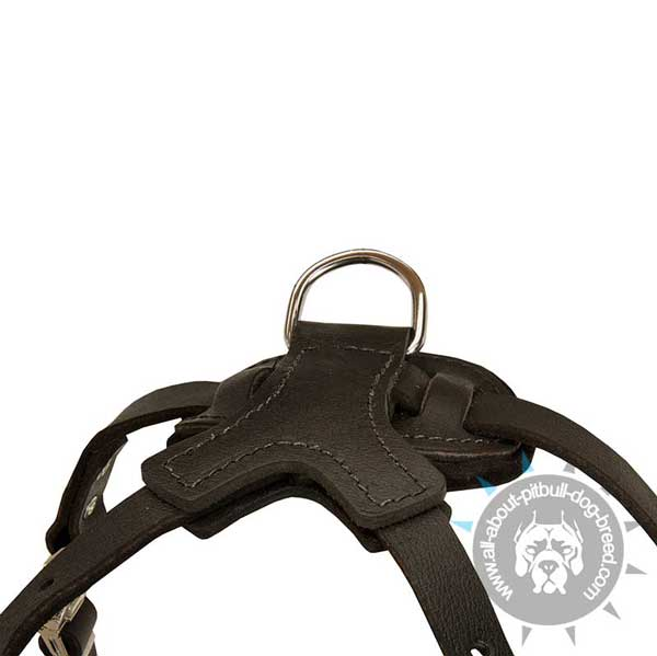 Skilfully designed leather dog harness