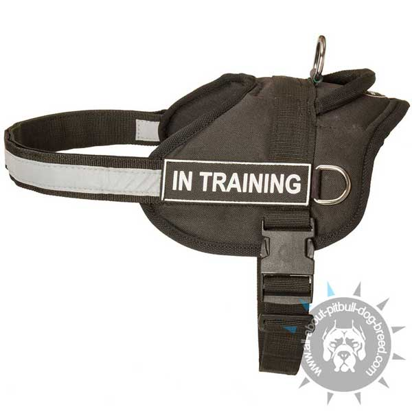 Safety holeproof nylon training harness