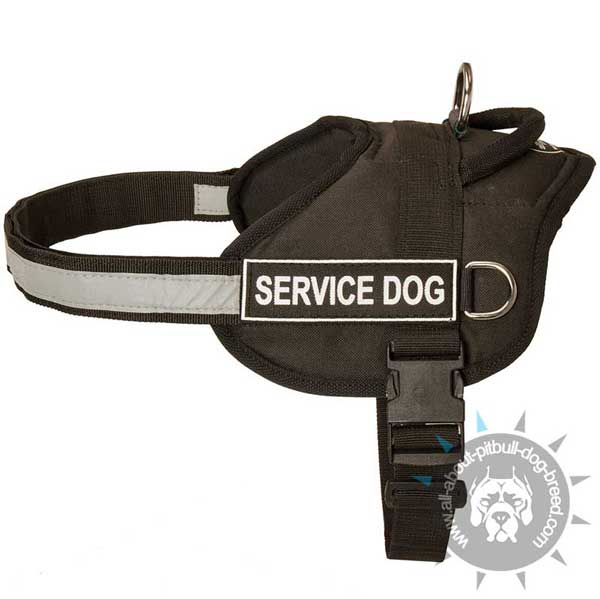 nylon harness for pitbull with easy in use buckle
