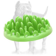 """Grassy Plate"" Interactive Pet Feeder for Pitbull's Correct Food Consumption"