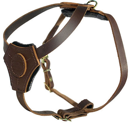 Dog Harness for small dogs/for Pitbull puppy