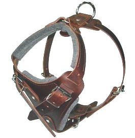 K9 Pro Leather Dog Harness for Pitbull