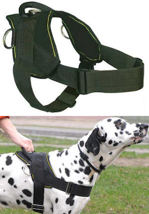 Best Dog Training Harness for PITBULL- Nylon Harness w/h handle - Click Image to Close