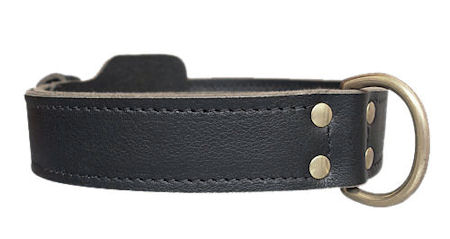 Pitbull K9 Leather Agitation Collar aprox.2 Wide