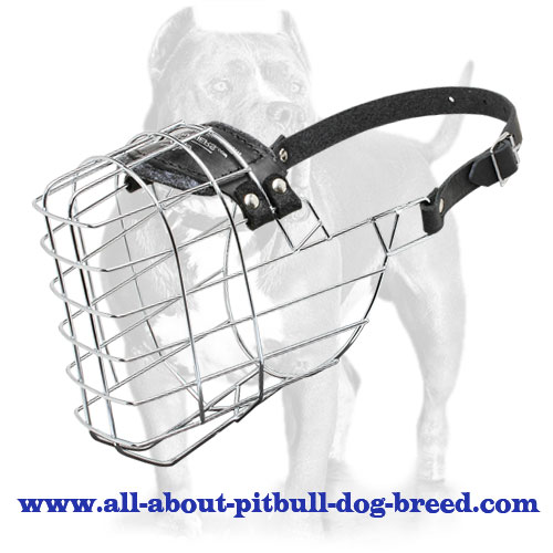 'The Silencer' Wire Basket Dog Muzzle for Pitbull