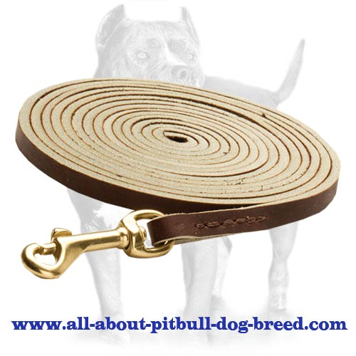 Training,tracking leather dog leash/ walking dog lead