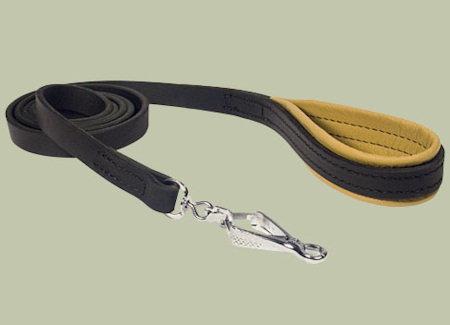Designer leather dog leashes
