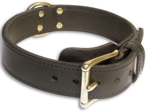 Excellent 2 Ply Leather Dog Collar with Fur Protective Plate