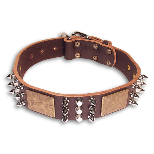 Spiked  Brown collar 24'' for PITBULL /24 inch dog collar-C86