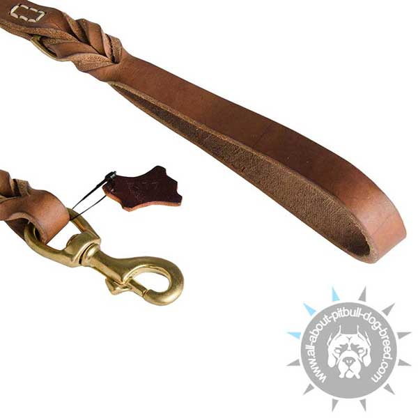 Strong Snap Hook on Walking Braided Pitbull Leash