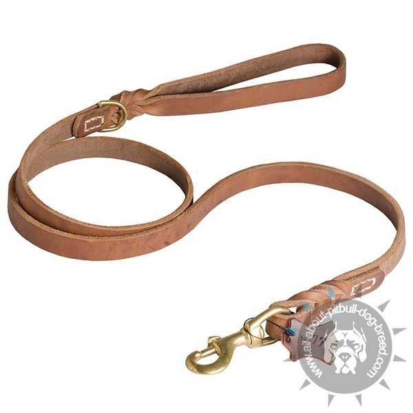 Leather Pitbull Leash for Daily Use