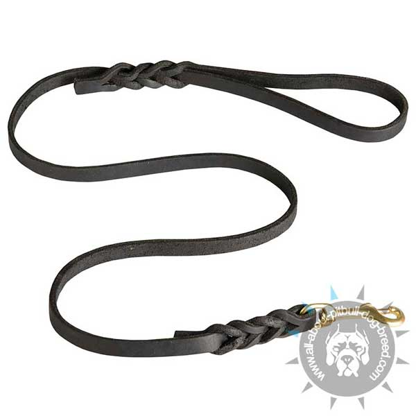 Walking Leather Dog Leash Decorated with Braids