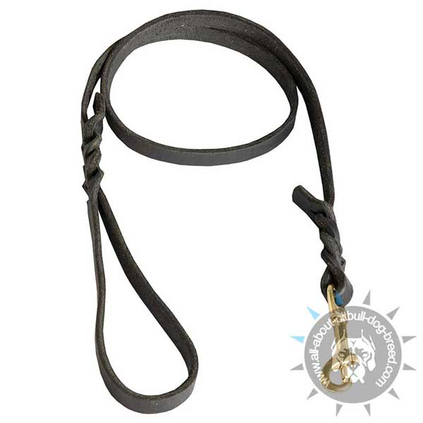 Durable Leather Dog Leash with Sturdy Hardware