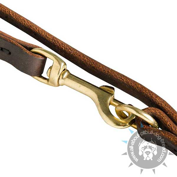 Reliable Leather Dog Leash for Walking
