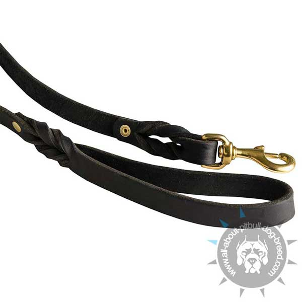 Comfortable Leather Leash with Brass Snapp Hook