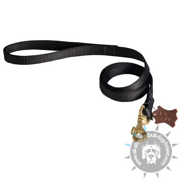 Lightweight nylon dog leash
