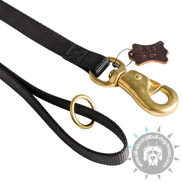 Nylon Leash Reliable in Use