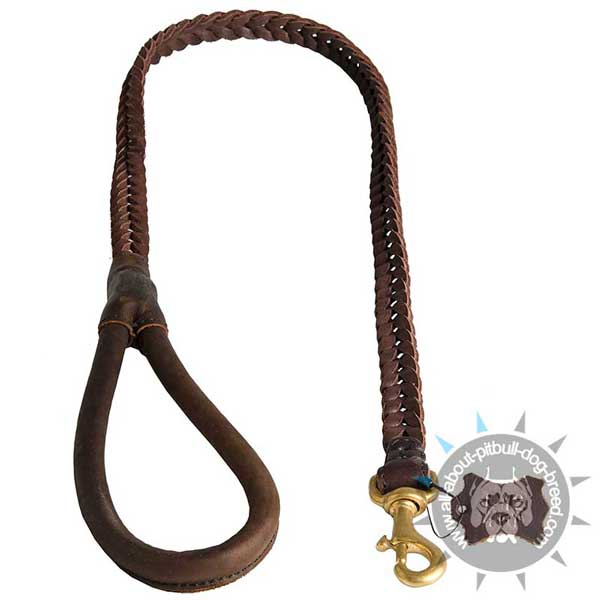 Braided Leather Pitbull Leash Stitched