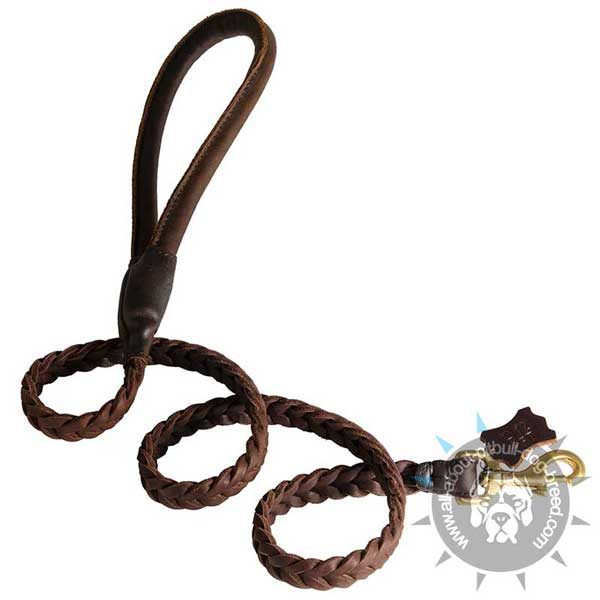 Braided Leather Pitbull Leash with Comfortable Round Handle