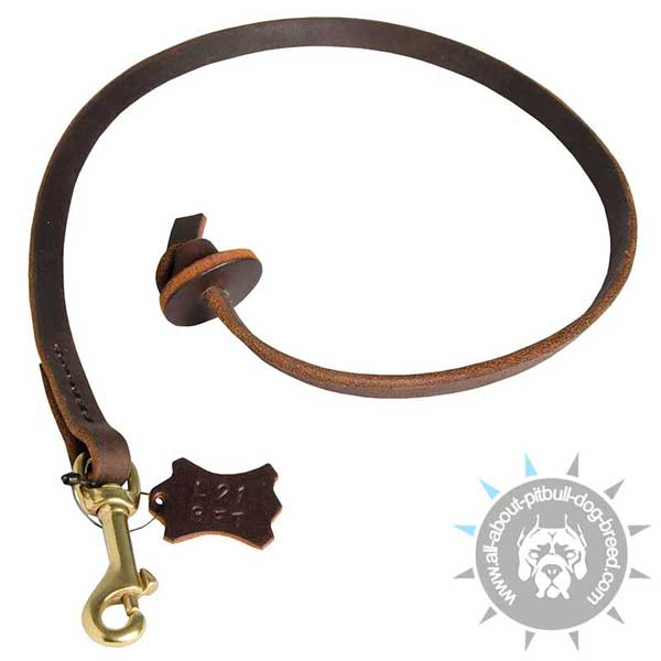 Pitbull Leash with Comfortable Circle Handle