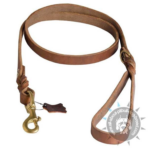 Braided Leather Pitbull Leash for Daily Use