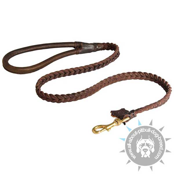 Hand Braided Leather Pitbull Leash with Handle