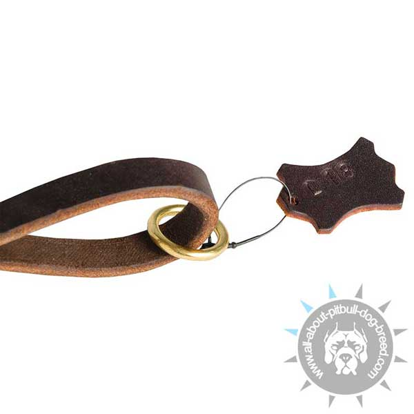 Leather Pitbull Leash for Dog Walking