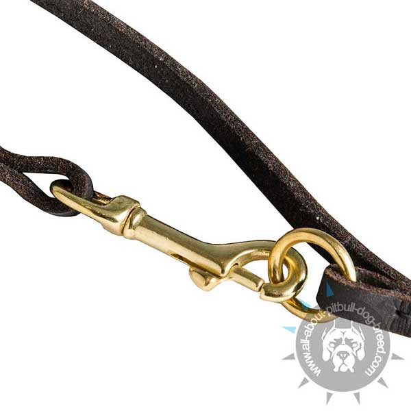 Leather Pitbull Leash with Stitched Brass Hardware