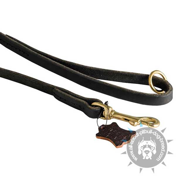 Stitched Leather Pitbull Leash with Massive Brass Snap Hook