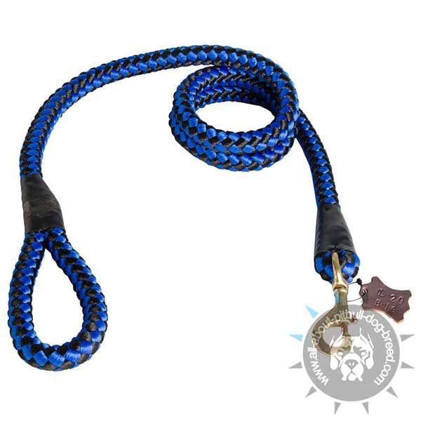 Super Strong Nylon Cord Pitbull Leash Blue for Any Weather