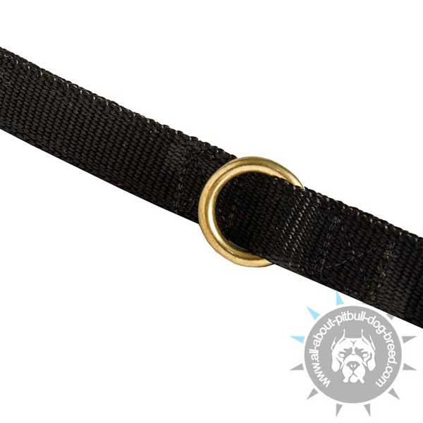 Nylon Pitbull Leash Equipped with Strong Floating Ring