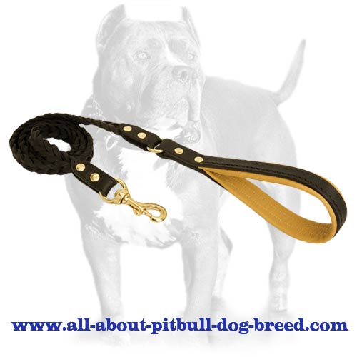 Braided Handcrafted Leather Dog Leash