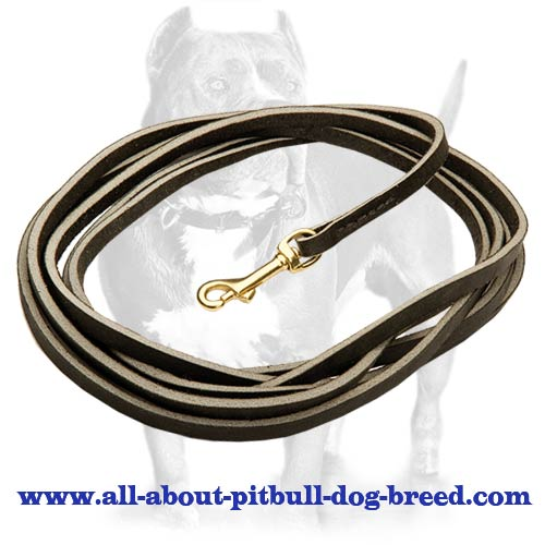 Unique leather leash