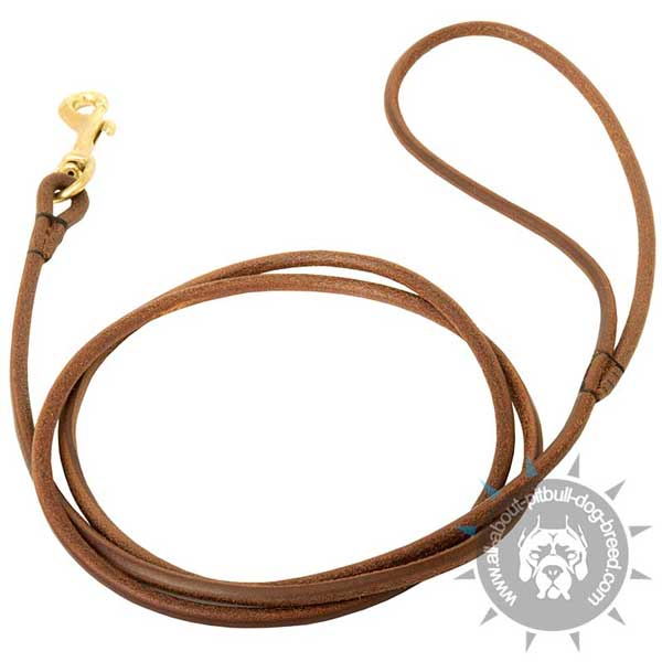 Selected Leather Dog Show Leash