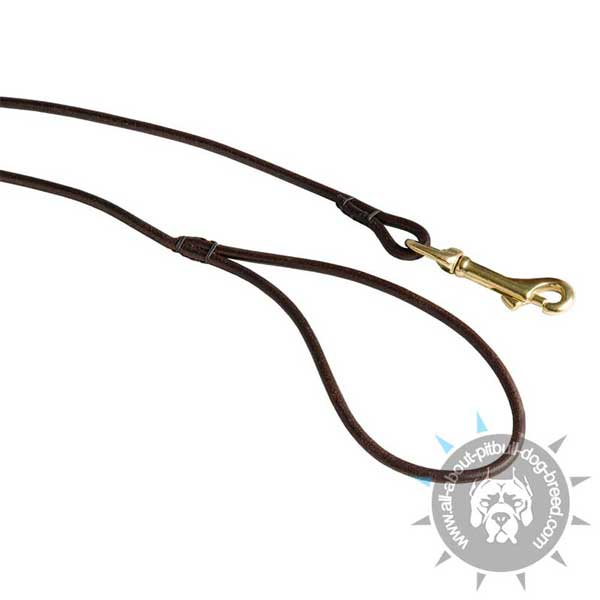 Round Leather Dog Leash with Comfy Handle
