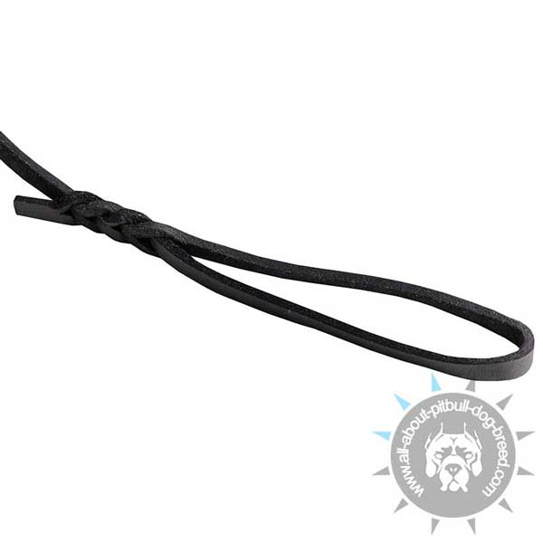 Soft Comfy Handle on  Pitbull Leash
