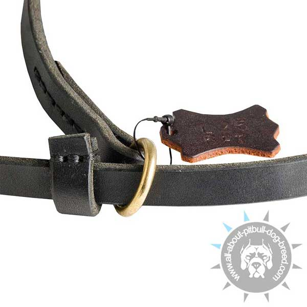 Strong D-Ring on Strong Leather Pitbull Collar