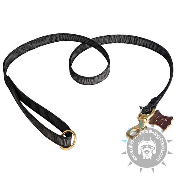 Nylon Pitbull Leash for Effective Training